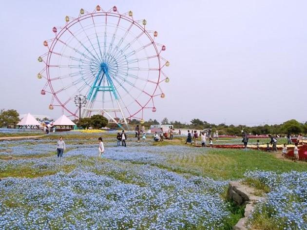 九州一賑わう「博多」で行きたい観光スポットおすすめランキング