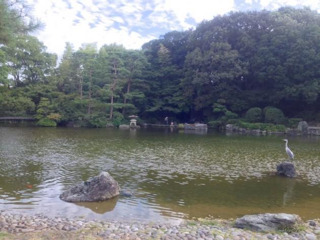 石橋文化センターの日本庭園