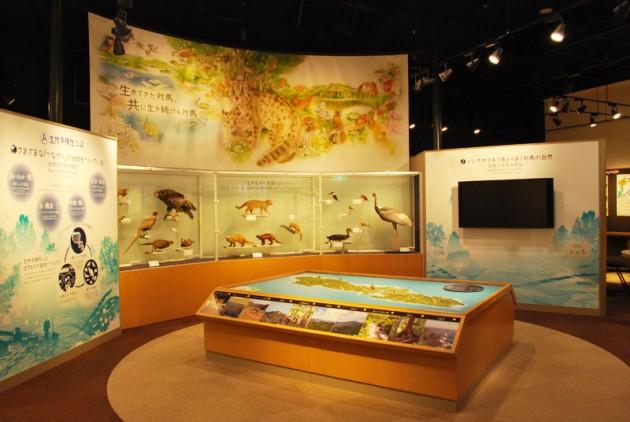 対馬野生生物保護センター