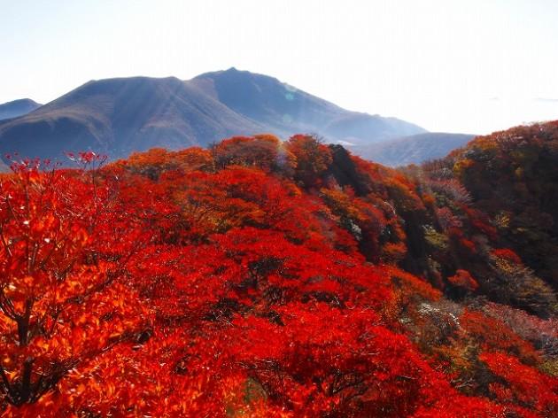九重連山を見渡せる「九重」の観光スポットおすすめランキング