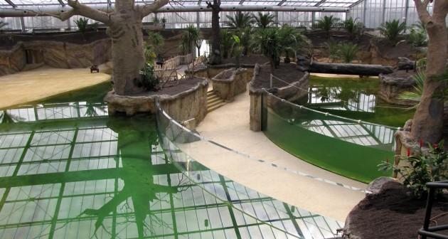 ケルン動物園
