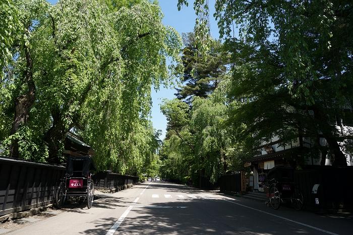 見どころ満載「秋田県」の観光スポットおすすめランキング