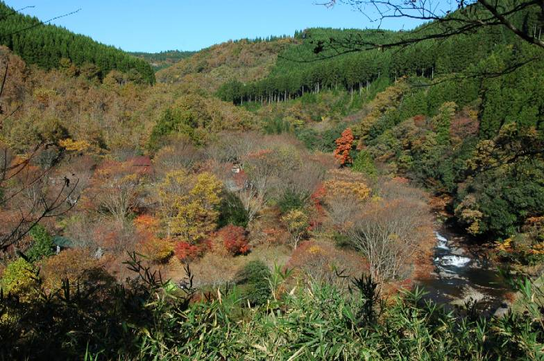自然との触れ合いが楽しい「黒川温泉」周辺の観光スポットおすすめランキング
