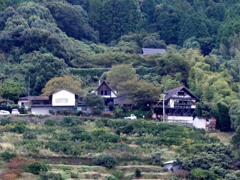 自然豊かな「和歌山」のグルメなランチおすすめランキング