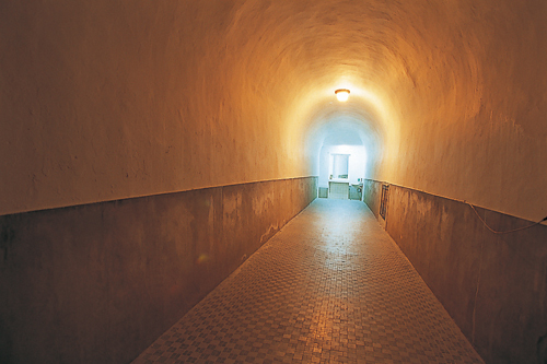 東和楼 トンネル