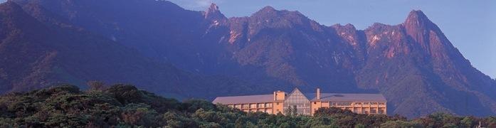 宇宙に一番近いといわれる「種子島」のホテル・民宿おすすめランキング