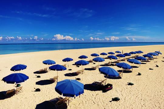 img-parasols