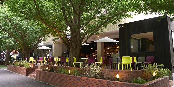 オシャレに愉しむ「テラス飲み」ができる都内レストランおすすめ6選