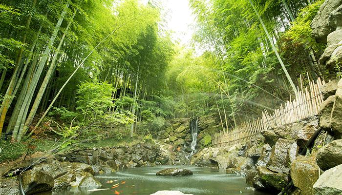 映画の世界に入り込んだような山間の湯宿「秘境 白川源泉 山荘 竹ふえ」