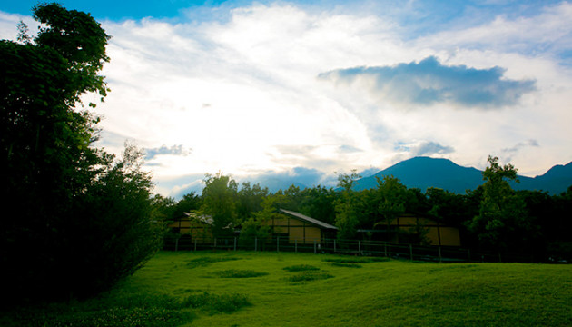森と緑のパワーに癒される「国内の高原宿」おすすめ6選