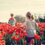 オランダでの子育て