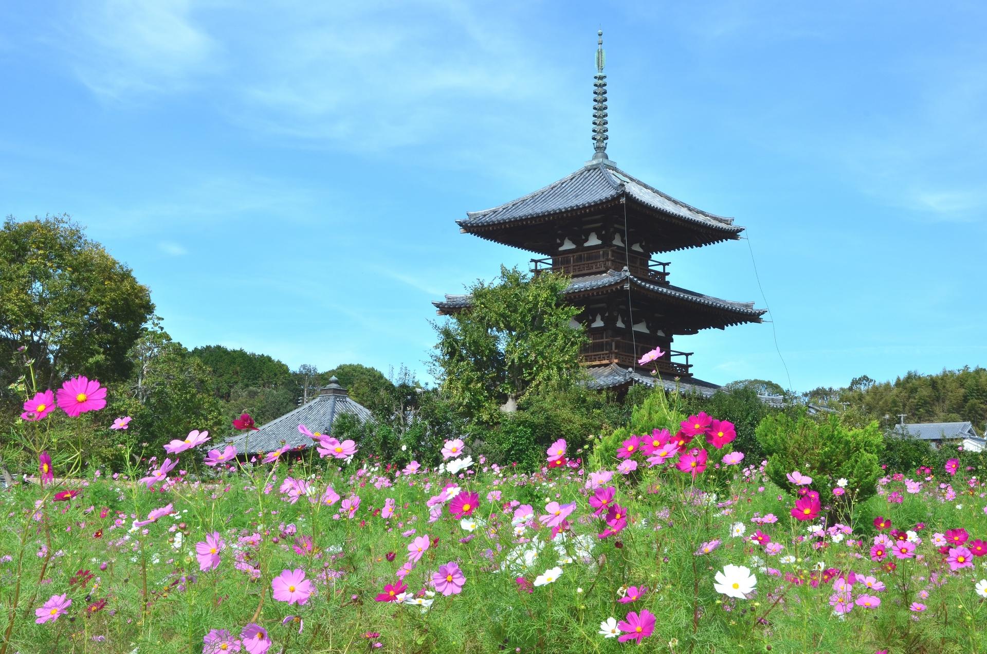 日本の世界遺産特集(1)「法隆寺地域の仏教建造物(奈良県)」